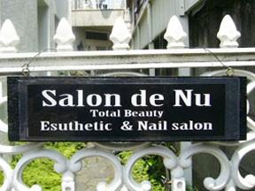 Salon de Nu