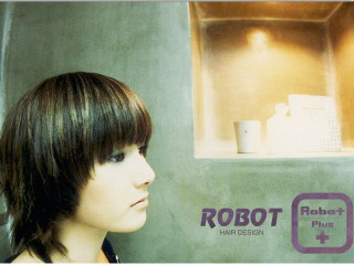 Robot Plus
