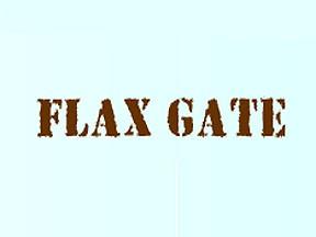 FLUX GATE