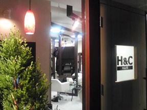 H&C hair