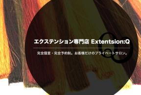 extension:Q