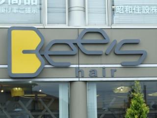 Bee's hair