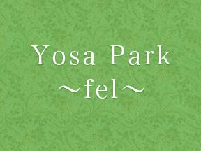 YOSA PARK~fel~